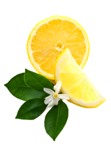 feosol lemon iron booster